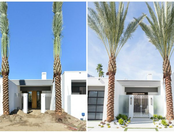 Design Transformations Inside a Mid-Century Modern House modern house Design Transformations Inside a Mid-Century Modern House Design Transformations Inside a Mid Century Modern House 1 feat 600x460