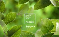 Pantone's Color of the Year for 2017 Is Everything You Might Wish For pantone color of the year Pantone Color of the Year for 2017 Is Everything You Might Wish For Pantones Color of the Year for 2017 Is Everything You Might Wish For 1 feat 240x150