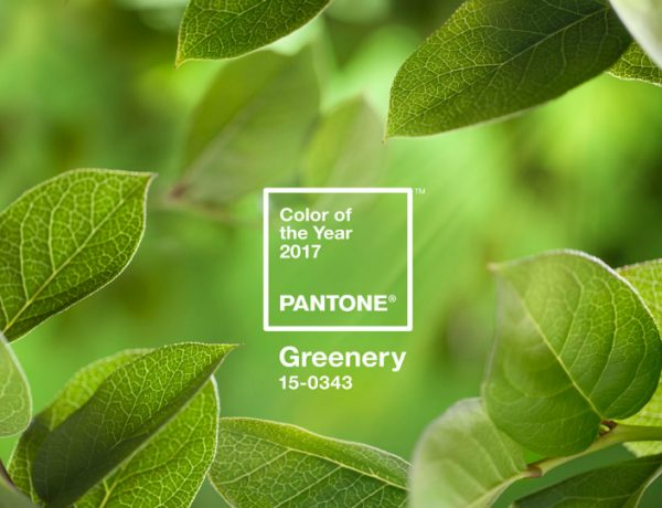 Pantone's Color of the Year for 2017 Is Everything You Might Wish For pantone color of the year Pantone Color of the Year for 2017 Is Everything You Might Wish For Pantones Color of the Year for 2017 Is Everything You Might Wish For 1 feat 600x460