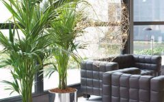 living room Living Room Ideas With Fresh Plants capa 22 240x150