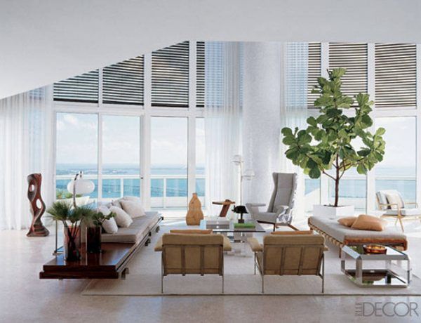 living room decor Indoor Trees Ideas For Your Living Room Decor fiddle leaf fig indoor tree white contemporary living room 600x460