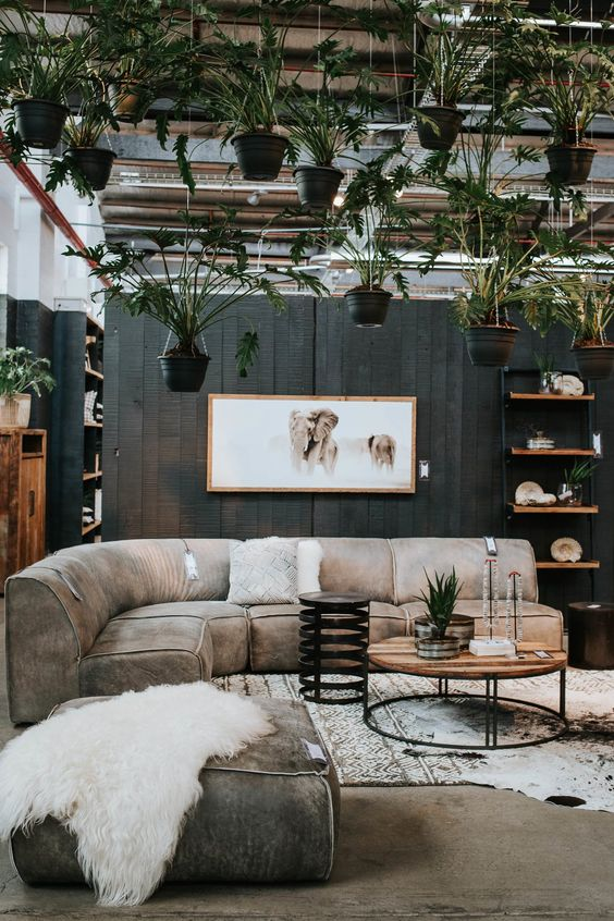 All You Need To Know About Biophilic Design In Just 5 Minutes!_3