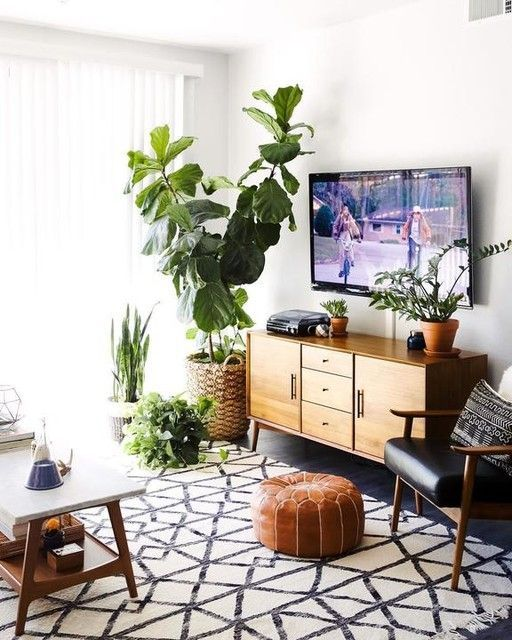 biophilic design All You Need To Know About Biophilic Design In Just 5 Minutes! All You Need To Know About Biophilic Design In Just 5 Minutes 4
