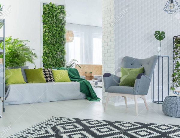 5 Green Living Room IDeas green living room 5 Green Living Room Ideas You'll love 🌳 5 Green Living Room Ideas 600x460