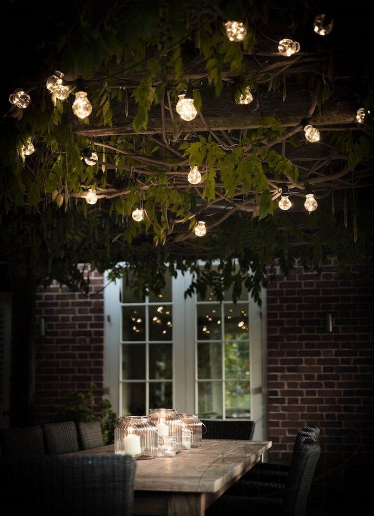 5 Ideas for a Perfect Garden Decor!🏡 garden decor 5 Ideas for a Perfect Garden Decor!🏡 Fairy Lights 743x1024